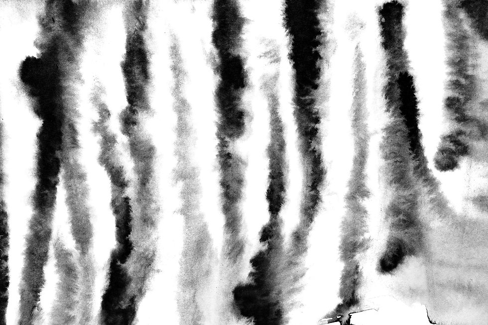 black white zebra backgrd.jpg