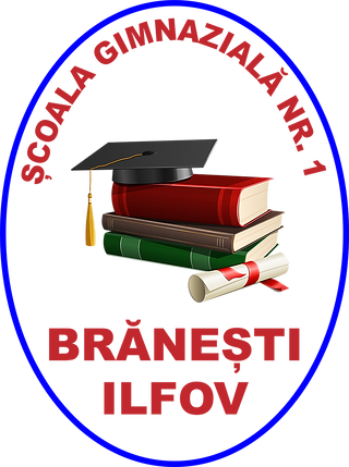 Logo1 scoala BUN.png