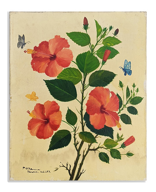 """""""Hibiscus"""" (1983)"""