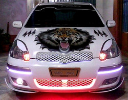 Tiger car lighting
