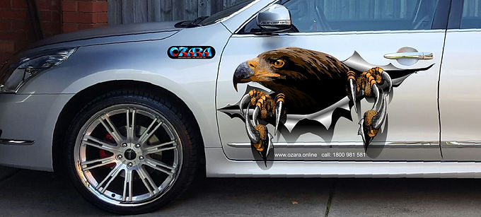 Eagle-Torn-body-decal