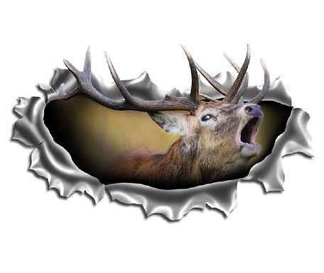 Red-Deer-Torn-Metal