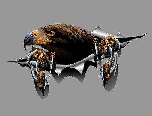 Eagle-Torn-Sticker