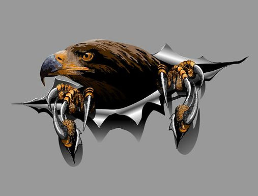Eagle-Torn-Sticker