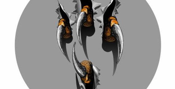 Eagle-Claw-101
