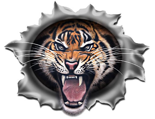 Angry-Tiger-Sticker
