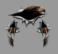 Eagle Torn Metal Sticker