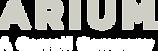 logo-arium-white-3_0.png