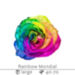 Rainbow+Mondial.jpg
