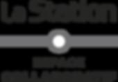 logo_gris pale.png