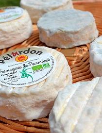 Pélardon_de_St_A._de_Majencoules.jpg