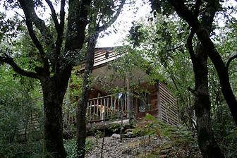 Chalet bois 5-7 personnes avec jardin privatif bord de rivière petit camping nature Cévennes.jpeg