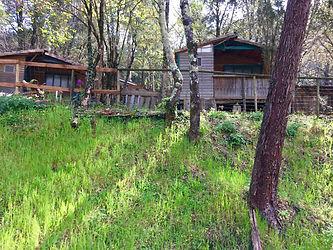 Chalet bois 5 personnes avec jardin privatif bord de rivière petit camping nature Cévennes.jpeg