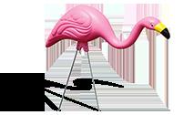 cabernet-sauvignon-flamingo-01.png