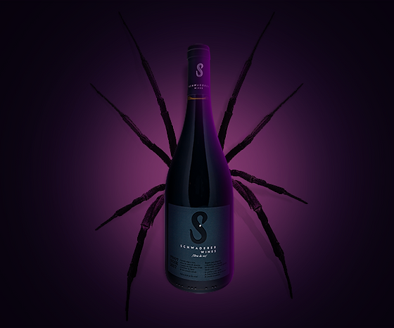 pinot-noir-vino.png