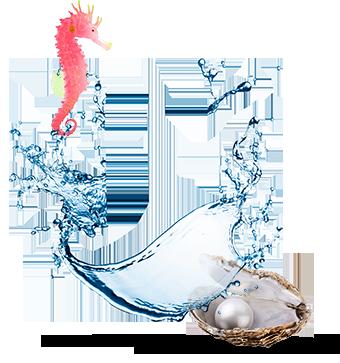 sauvignon-blanc-marisco.png