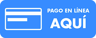 pago_onLine.png