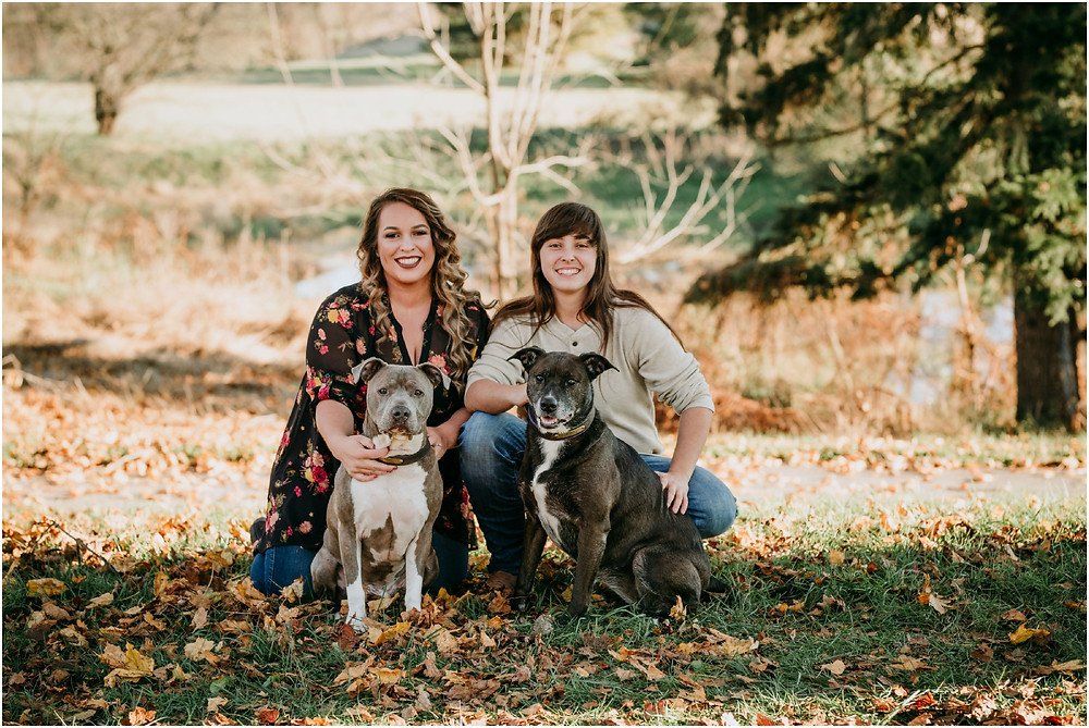 Fall Engagement Session in Maryland with fall leaves and dogs