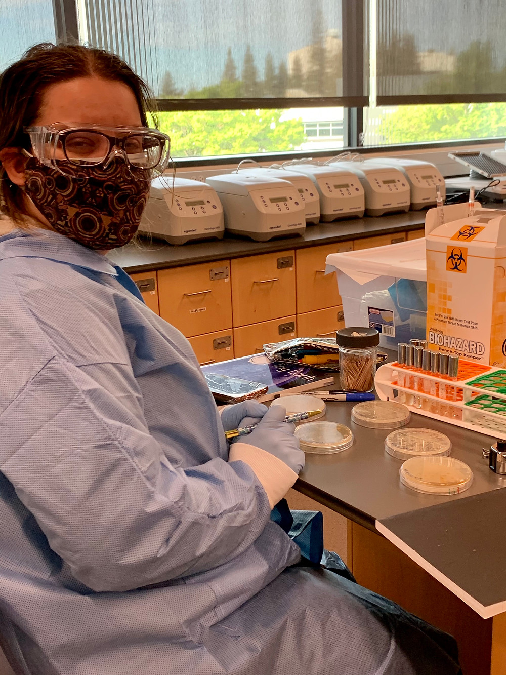 Student at her laboratory bench