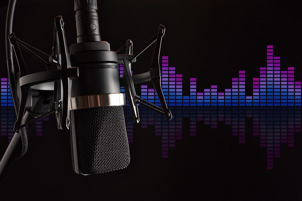 Large Condenser Microphone in Shock Moun