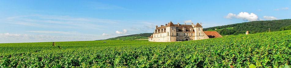 Bourgogne Landscape.jpg