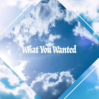 What u Wanted.jpg