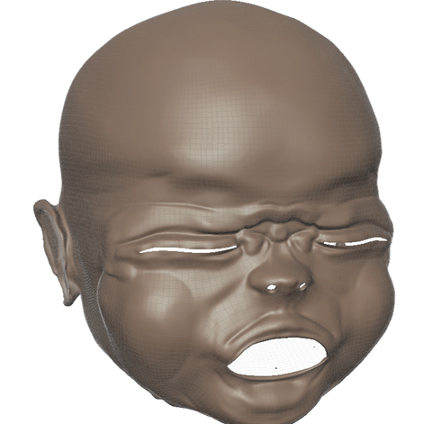 Yawn within Mudbox, subdivided to Level 5.