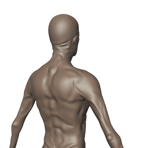 Backside of Fume within Mudbox, subdivided to Level 2.