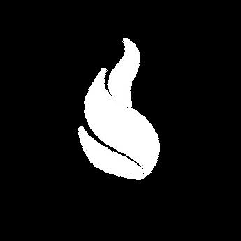 White Icon (1).png