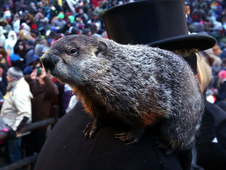 Groundhog Day: Punxsutawney Phil Did Not See His Shadow