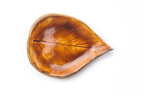 Tanierik - Malinový list / Hnedý