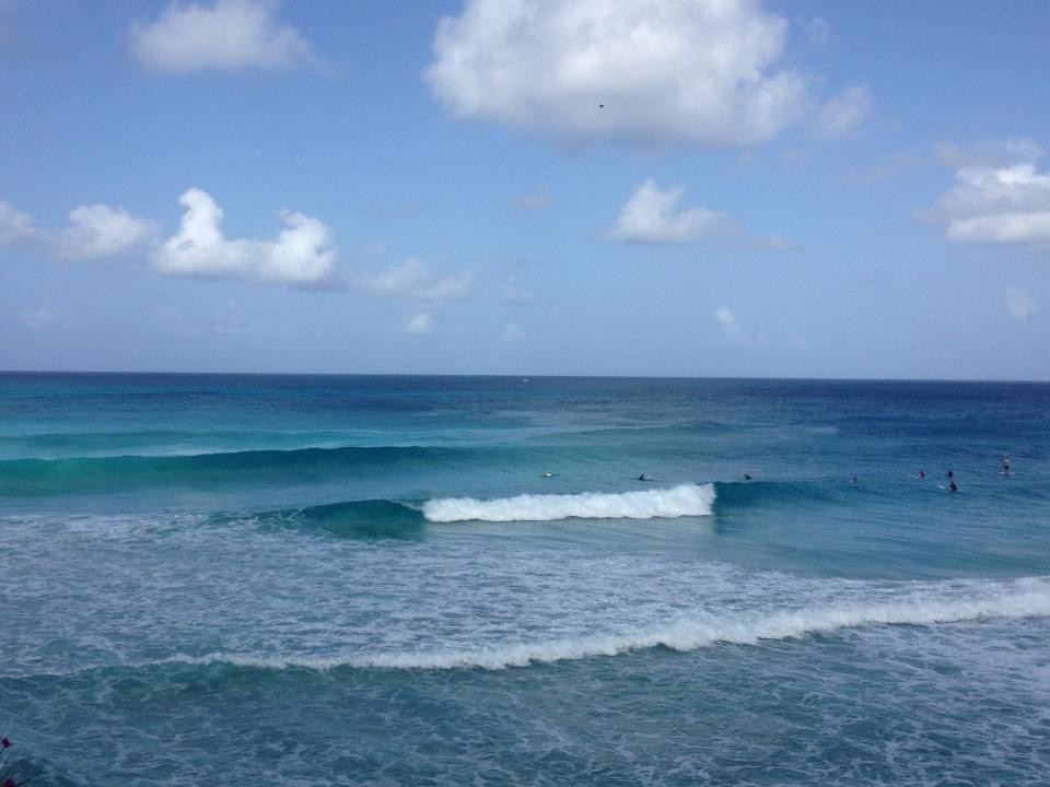 Freights Bay Barbados Surf Lessons