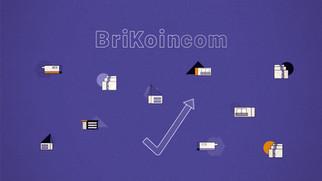 BriKoin - leverage your returns.jpg