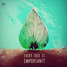 Every tree is important