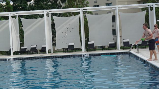 Summer Sales Fun: Pool Dive