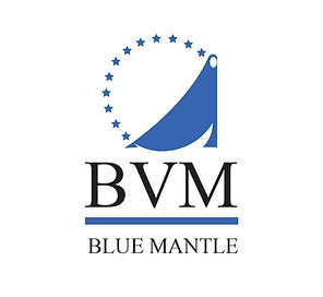 bluemantle logo 2.jpg