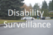 Disability Surveillance 300x200.png