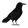 Crow_edited_edited.png