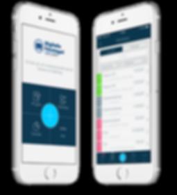 Digitala företaget app, mobilapp, Björn Lundén, Björn Lunden, Digitalt, digitalisering