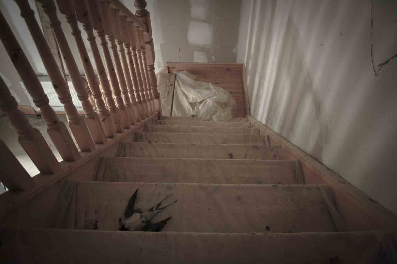 Ghost Estate-7.jpg