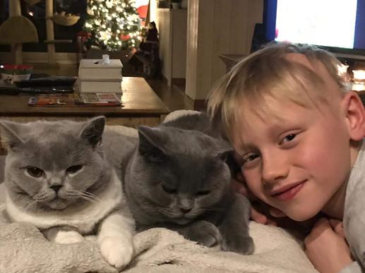 3 dikke vrienden