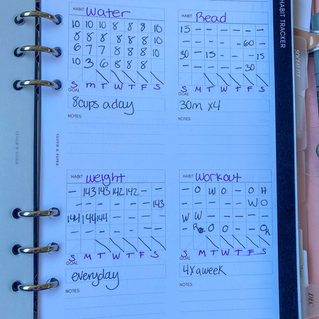 November 2020 Goals (Achieved or not)