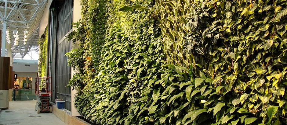 Additional Green Walls