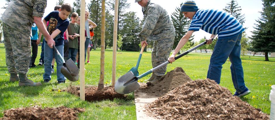 Planting trees - IAHS
