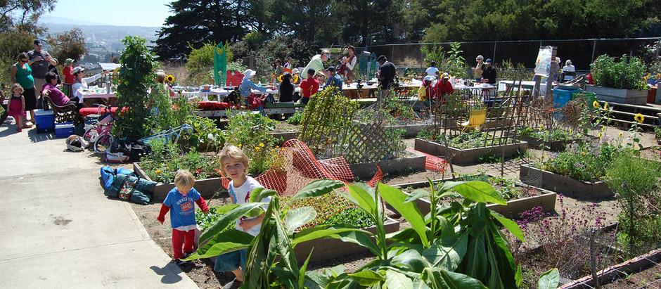 Student garden