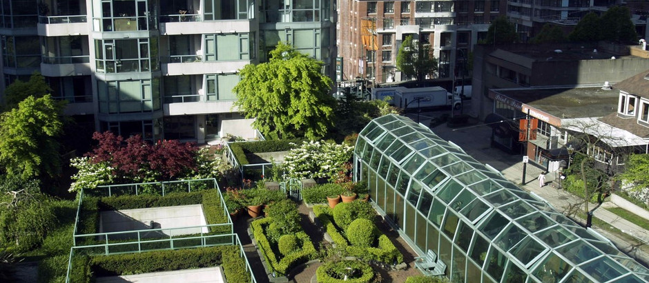 Expansion to roof top terrace pollinator garden