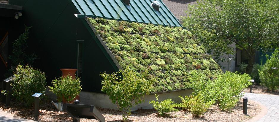 Green roofs - IAHS