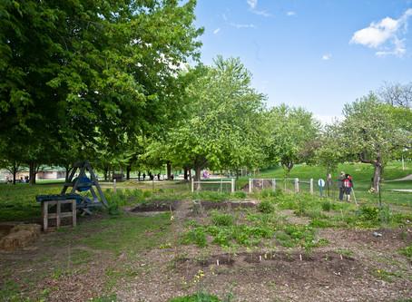 IAHS Community Garden