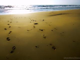 Non si può essere infelice quando si ha questo: l'odore del mare, la sabbia sotto le dita, l'aria, i