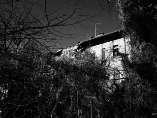 Vecchio macello di Udine